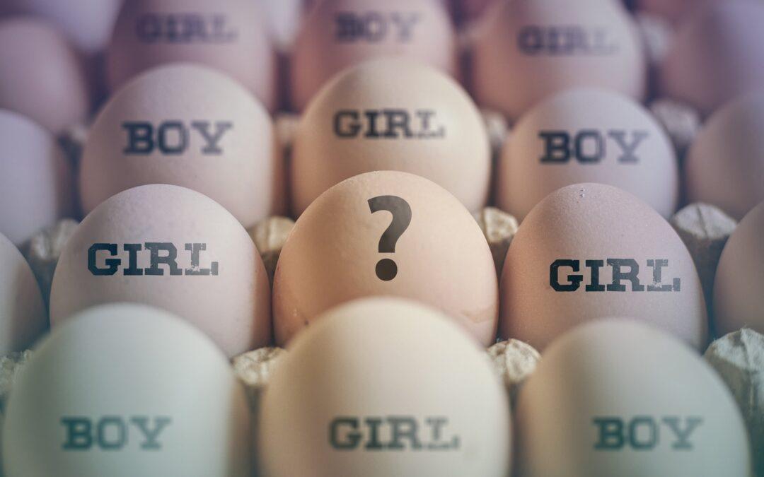 Geslachtsbepaling: feit of fabel?